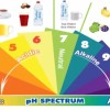 What the PH of what you eat and drink?